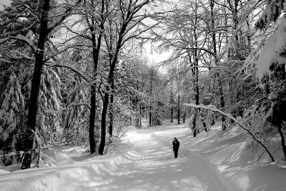 Winter walk in la morte france chainpurdesign - Office du tourisme alpes du grand serre ...